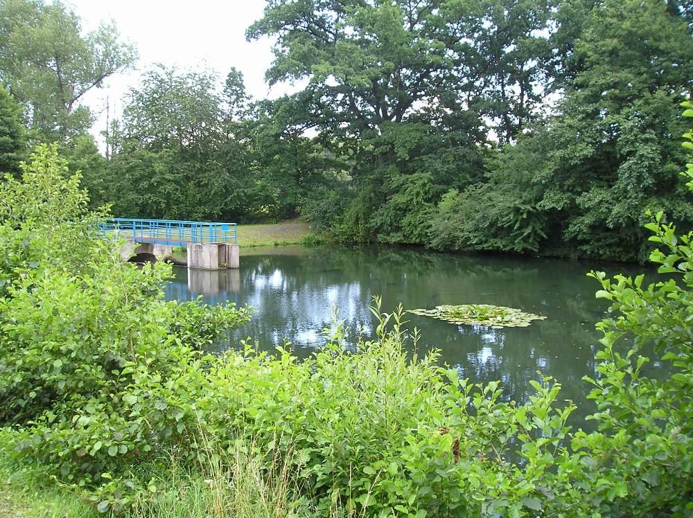 Petrovický rybník – ul. Euklidova